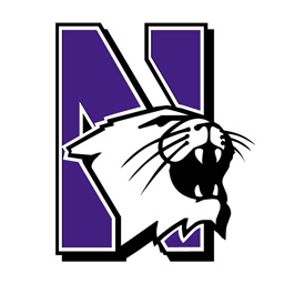 Logo for Northwestern Wildcats